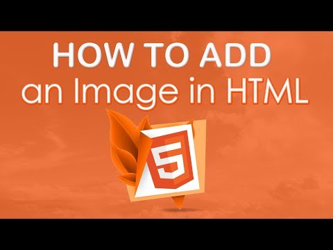 How To Add An Image In HTML