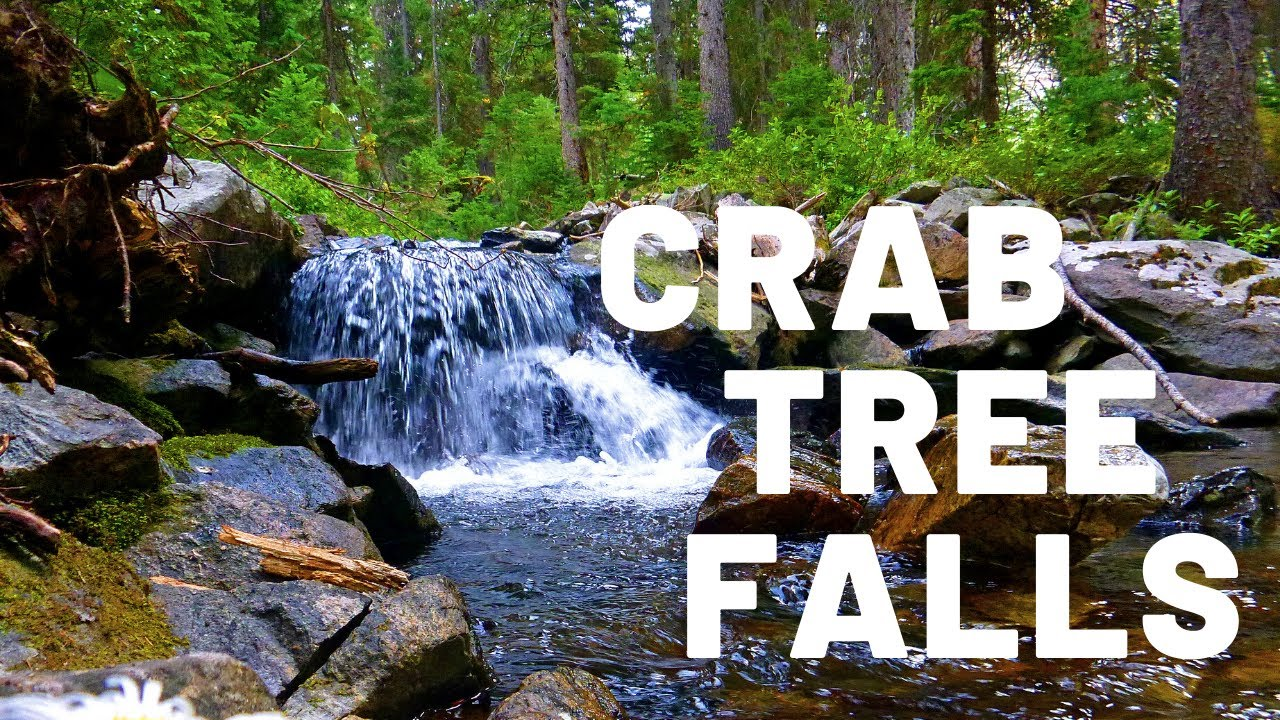 Hike to Crab Tree Falls VA ~ Part II