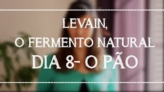 LEVAIN, o fermento natural | Dia 8 - O Pão