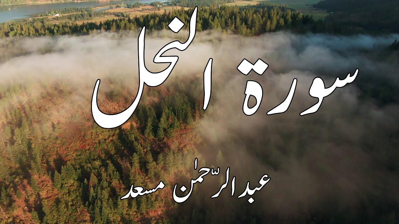 Surah Nahl Abdul Rahman Mosad عبدالرّحمٰن مسعد سورۃ النحل