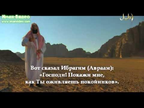 Истории о пророках (9 из 30): Ибрахим. Исмаил. Исхак. Яъкуб