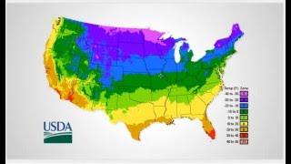 Plant Zone Maps