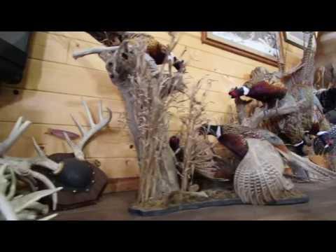 South Dakota Pheasant Hunting Lodge