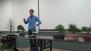 Jonas Dupuich On Evaluating Bonsai
