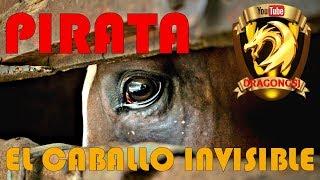 PIRATA -  EL CABALLO INVISIBLE