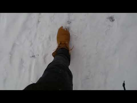 Timberland Boots in the snow on feet