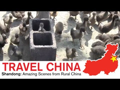 Shandong Travel - Amazing Scenes from Rural China