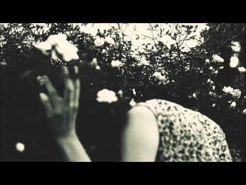 The Tartus - Lose You