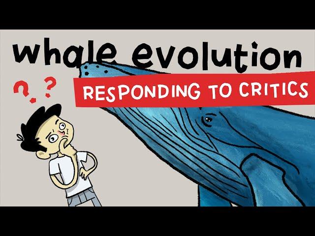 Whale Evolution: A Rebuttal