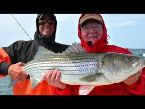 reel deal charters cape cod