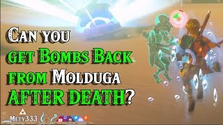Can you get 2 BOMBS BACK from Molduga AFTER DEATH in Zelda Breath of the Wild?