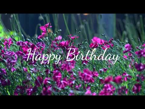 Happy birthday wishes :) [Ecard - Flowers] 🌼