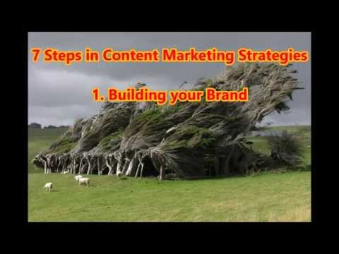 Content Marketing Strategies Insights for Best Results | Part 1