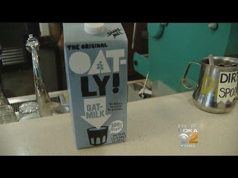 Oat Milk A Trendy New Dairy Alternative For Coffee Drinkers
