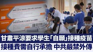 甘肅平涼要求學生「自願」接種疫苗 嚴禁外傳|@新唐人亞太電視台NTDAPTV |20201216 - YouTube