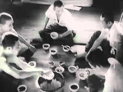 【邦画】 1945 陸軍特別攻撃隊 昭和20年 配給 日本映画社