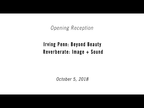 opening-reception-|-irving-penn:-beyond-beauty-and-reverberate:-image-+-sound