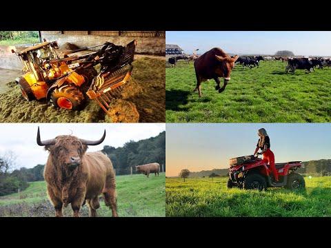 MY FARMING YEAR !