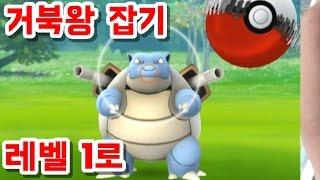 포켓몬고 거북왕 Level 레벨 1로 잡아본 도전기-메가진화 포켓몬 사냥