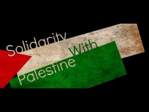 Update: Palestine (& much more)