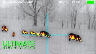 80 Hogs Down with the FLIR ThermoSight Pro PTS233