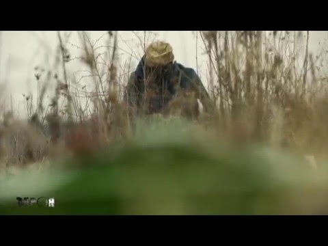 Weapons: Everything About Demining