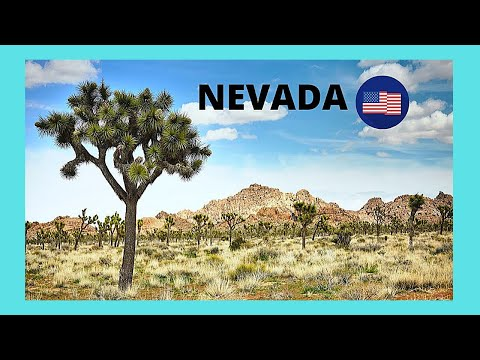 LAS VEGAS, the incredibly beautiful MOJAVE DESERT,  Nevada (USA)