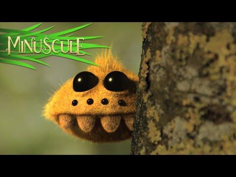 Мир насекомых мультфильм