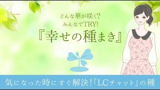 【幸せの種まき Vol.2】~すぐに解決!LCチャット~
