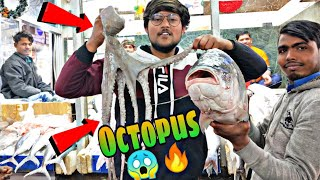 BIGGEST MEAT MARKET IN INDIA 😍🔥( Octopus,Prawn,Crab,Fish, Chicken)