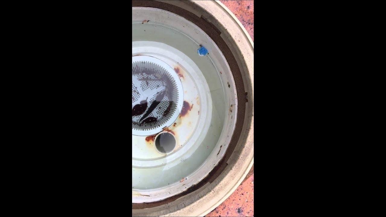 skimmer plate for vacuum hose