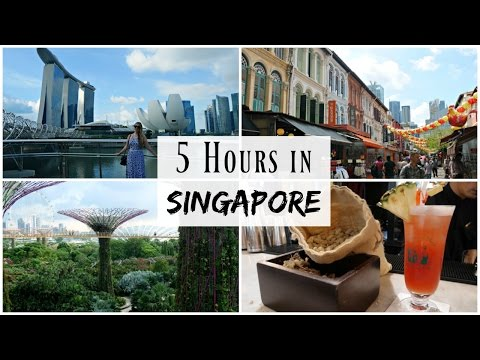 5 Hours Exploring Singapore - Long Layover | Travel Vlog | Lux Life
