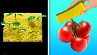 26 cara mudah untuk menanam buah dan sayuranmu sendiri