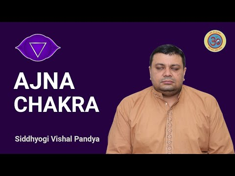 Ajna Chakra (Third Eye) - Experience of the Self.