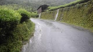 8月28日の豪雨
