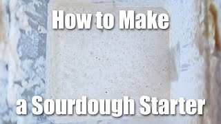 How To Make A Sourdough Starter - Video Recipe