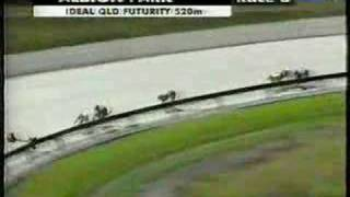 2002 QLD FUTURITY FINAL M