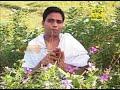 How to Reduce Belly Fat Natural and Ayurvedic Remedy   Acharya Balkrishna