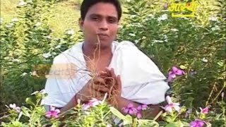 How to Reduce Belly Fat Natural and Ayurvedic Remedy | Acharya Balkrishna