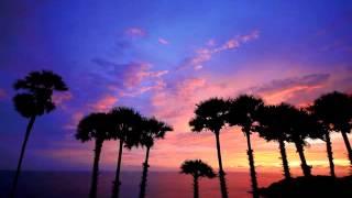 12 - Strangers in the Night - Big Ben Hawaiian Band