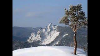"М.Ю.Лермонтов ""На севере диком растёт одиноко..."""