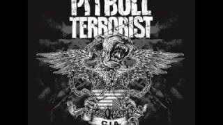 Watch Pitbull Terrorist Economaniac video