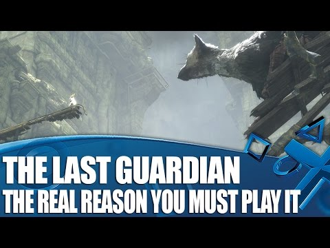 The Real Reason You Must Play The Last Guardian