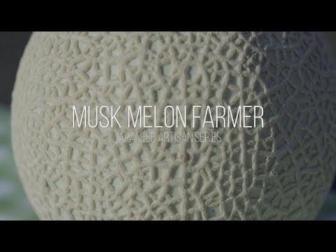 'The Art of Musk Melon' - Japanese Artisan Series