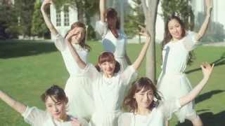 Chu-Z - 花のアーチ