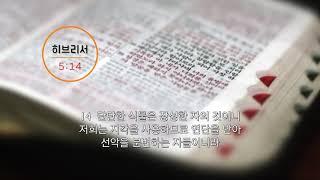 [신천지] 말씀으로 여는 하루 85화 - 히브리서 5장14절