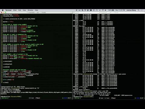 Return Oriented Exploitation (ROP)