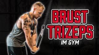 PUSH DAY im Gym | Trainingsplan für Brust, Schulter und Trizeps im Fitnessstudio (Muskelaufbau)