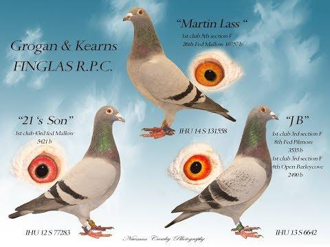 GROGAN & KEARNS PRE-AUCTION LOFT VISIT WITH Thomas Grogan & Gerry Mccourt .
