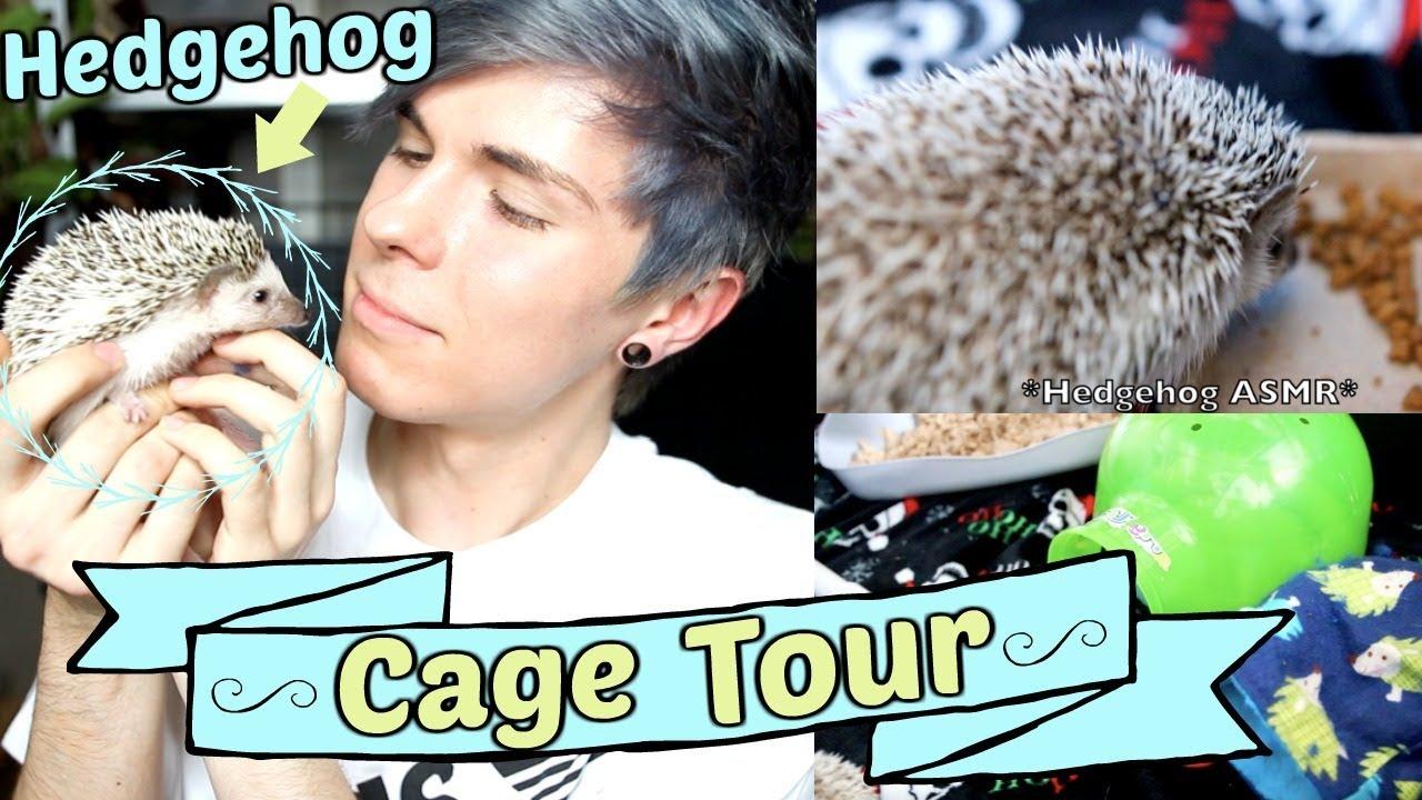 hedgehog-cage-tour-2-off-coupon